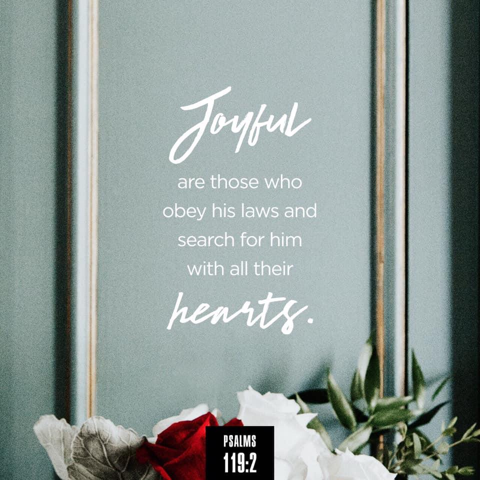 Obey + Seek = Joy!