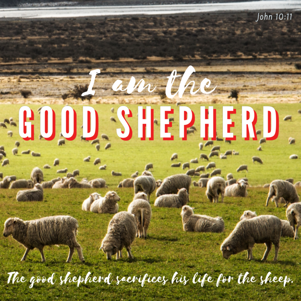 """Sacrificing our lives for our """"sheep"""" is living like Jesus."""